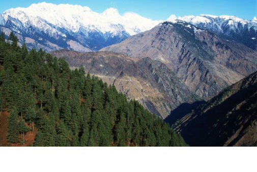 Langtang & Helambu Views